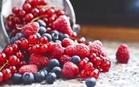 Картинка ягоды, малина, урожай, черника, красная, смородина