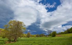Картинка дорога, поле, небо, облака, деревья, дом