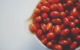 Картинка красные, помидоры, томаты, овощ, помидорки