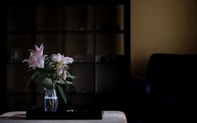 Обои кресло, розовые, шкаф, букет, лилии, стол, комната