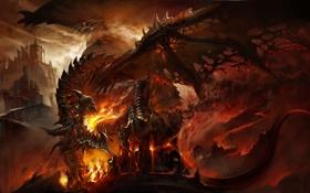 Картинка Дракон, руины, WoW, World of Warcraft, Смертокрыл