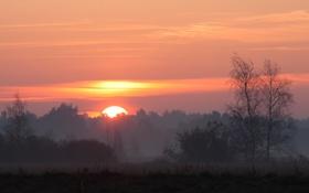 Картинка небо, солнце, пейзаж, закат, природа, туман, восход