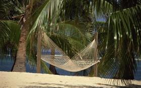 Картинка песок, пляж, пальмы, гамак