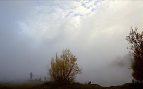 Картинка пейзаж, природа, туман, река, рыбалка, рыбак, утро