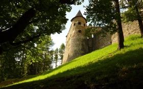 Картинка солнце, тень, травка, замок, холм, деревья, день