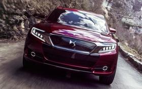 Обои Wild Rubis, фары, Concept, дорога, авто, передок, Citroen