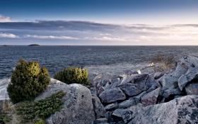 Обои камни, растительность, залив, Финский