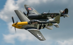 Обои Mustang, истребители, P-51, Spitfire, Mk XVI