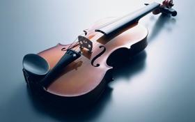 Обои музыка, скрипка, струны, музыкальные инструменты