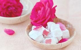Обои цветок, роза, сладость, мармелад, сахарная пудра