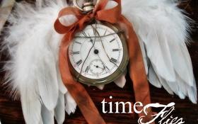 Обои время, часы, крылья, старые, ангел, wings, old