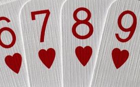 Обои 6789, hearts, карты