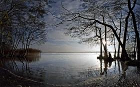 Картинка солнце, деревья, природа, река, Германия
