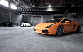 Обои авто, фото, обои, Lamborghini, Porsche, тачки, Gallardo