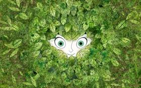 Картинка фентези, листва, мультфильм, зелёные глаза, улыбка, Aisling, The Secret of Kells