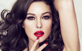 Картинка волосы, губы, красные, Monica Bellucci, ногти