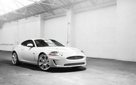 Обои белый, купе, jaguar