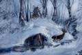 Картинка зима, лес, ассасин, коннор, Assasins Creed 3