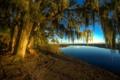 Картинка солнце, деревья, ветки, река, берег, США, Georgia