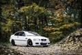 Картинка E46, листья, BMW, white, осень
