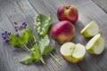 Картинка цветы, яблоки, ландыши, flowers, дольки, apples, lilies