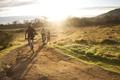 Картинка солнце, природа, утро, велосипедисты