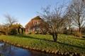 Картинка деревья, дом, весна, канал, гармония