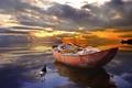 Картинка пейзаж, закат, птица, лодка