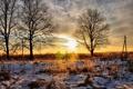 Картинка зима, небо, солнце, снег, деревья, пейзаж, закат