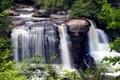Картинка США, камни, ветки, ручей, зелень, Blackwater Falls State Park, листья