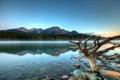 Картинка горы, туман, Patricia Lake