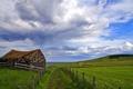 Картинка дорога, поле, пейзаж, дом, забор