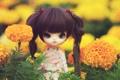 Картинка цветы, игрушка, кукла, брюнетка, косички, сидит