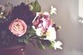Картинка букет, лепестки, цветы