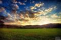 Картинка закат, лес, трава, небо, облака, Aaron Woodall, луг