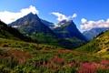 Картинка лес, горы, природа, поляна, национальный парк
