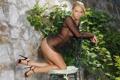 Картинка девушка, стена, блондинка, стул, плющ