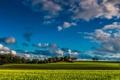 Картинка поле, небо, трава, облака, деревья, фермы