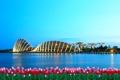 Картинка цветы, город, здания, вечер, залив, Сингапур, тюльпаны