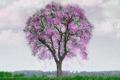 Картинка дождь, дерево, весна, арт