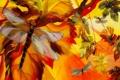 Картинка рисунок, цвет, дерево, стрекоза, природа, крылья, ветка