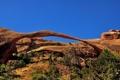 Картинка небо, скалы, арка, сша, кусты, Arches National Park, uta