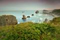 Картинка море, небо, облака, цветы, камни, скалы