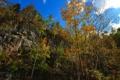 Картинка осень, небо, облака, деревья, скала