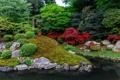 Картинка деревья, пруд, парк, камни, кусты