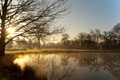 Картинка солнце, деревья, туман, озеро, Англия