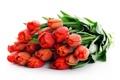 Картинка тюльпаны, букет, цветы