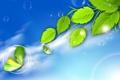 Картинка листья, коллаж, бабочка, ветка, пузырек