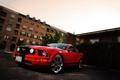 Картинка красный, Mustang, Ford, мустанг, red, мускул кар, форд