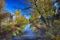 Картинка пейзаж, осень, Канада, небо, дома, Калгари, парк